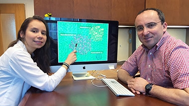 photo - two researchers in office