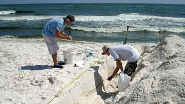 photo - two researchers digging in sand by seashore