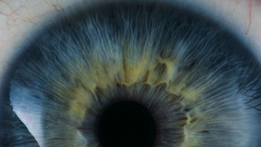 closeup of human eye