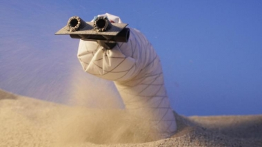 Researchers have developed a fast, steerable, burrowing soft robot (Photo: UC Santa Barbara)