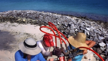 Removing Coral Fossil Cores