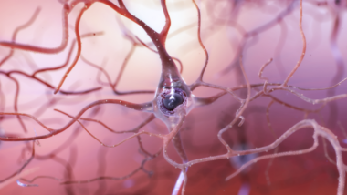 Healthy neuron illustration NIA/NIH