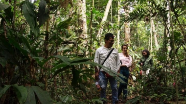 Hiking into the rain forest