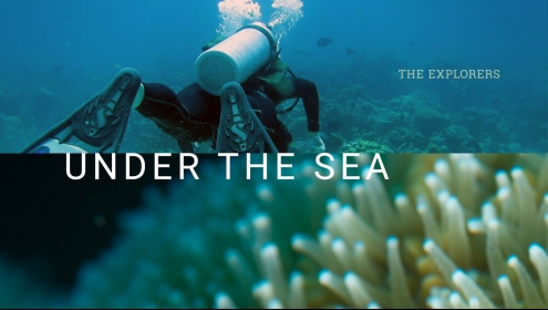 The Explorers - Under the sea