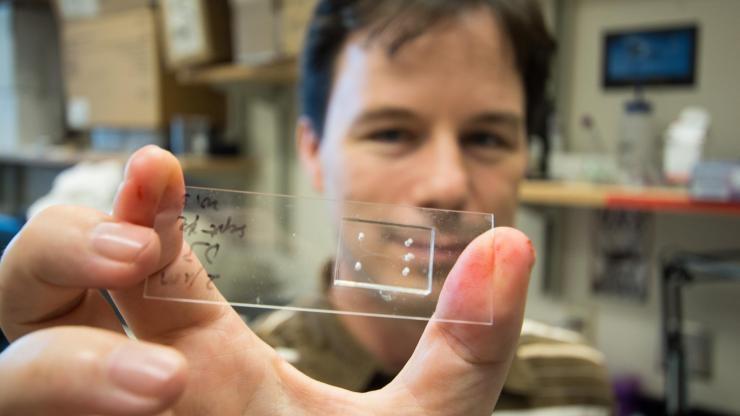 Todd Sulchek and microfluidic device