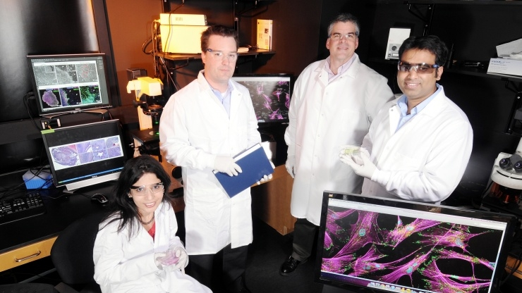 Stem cell separation researchers