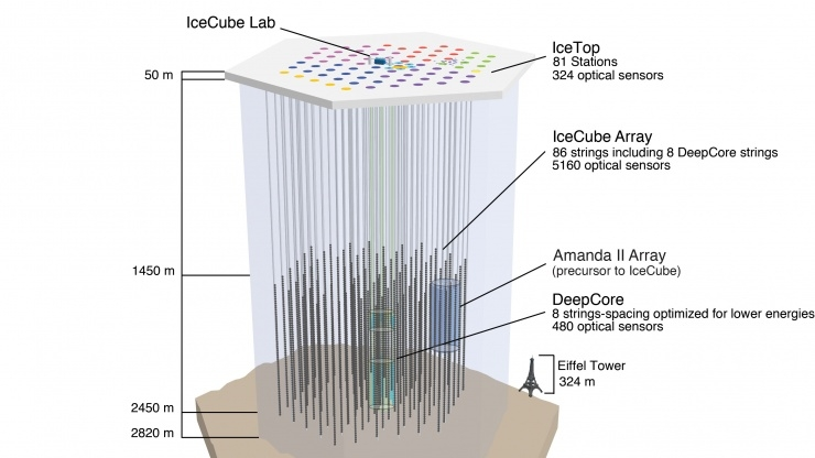 IceCube Observatory - Schematic