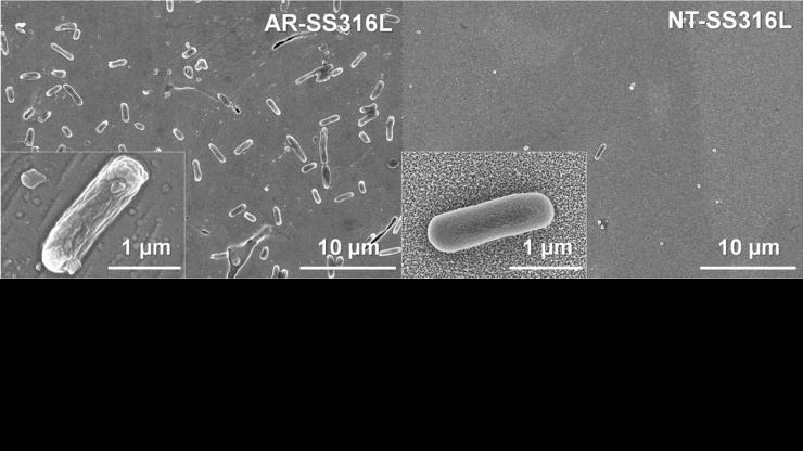 Bacterial growth on treated and untreated stainless steel