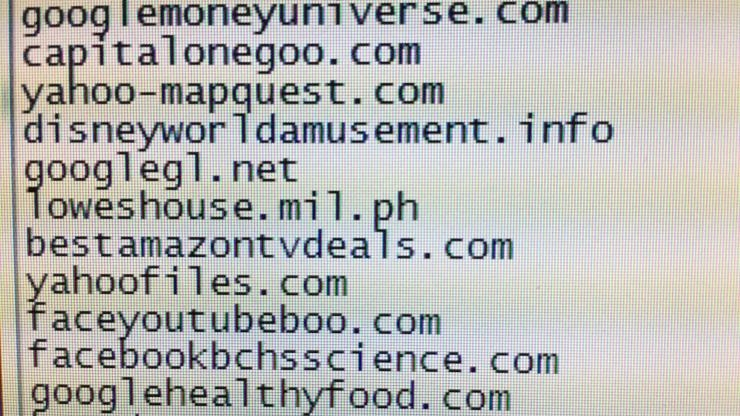 Examples of combosquatted domains
