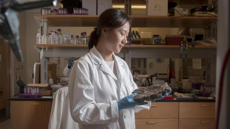 Yuanzhi Tang in her lab in Georgia Tech's School of Earth and Atmospheric Sciences