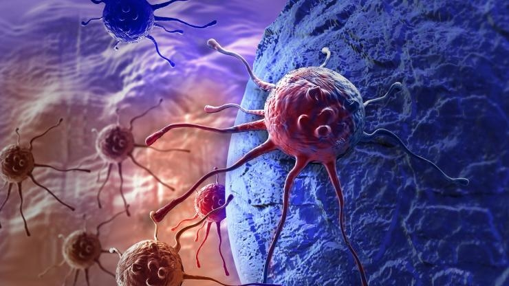 Migrating cancer cells artist rendering