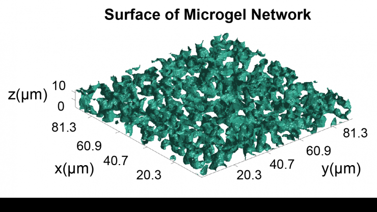 Microgel network surfaces