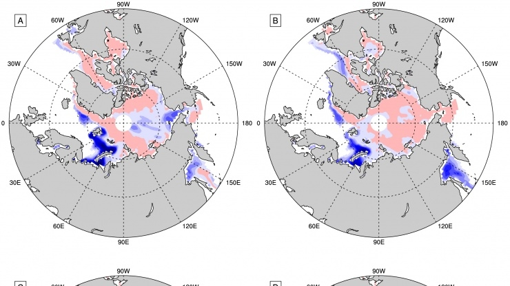 Arctic sea ice concentration map