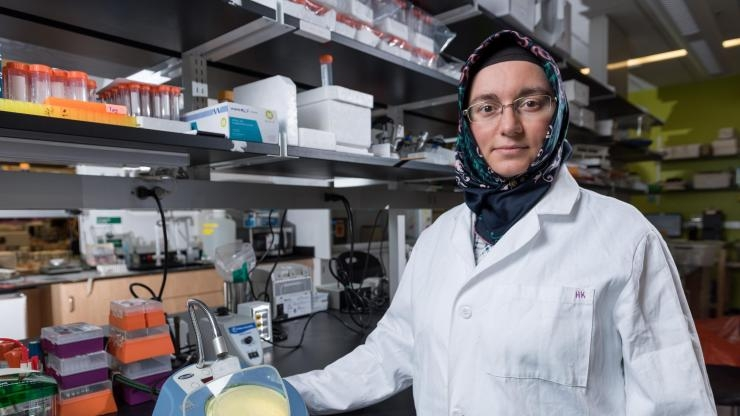 Havva Keskin observes frequencies of RNA-templated DNA repair.