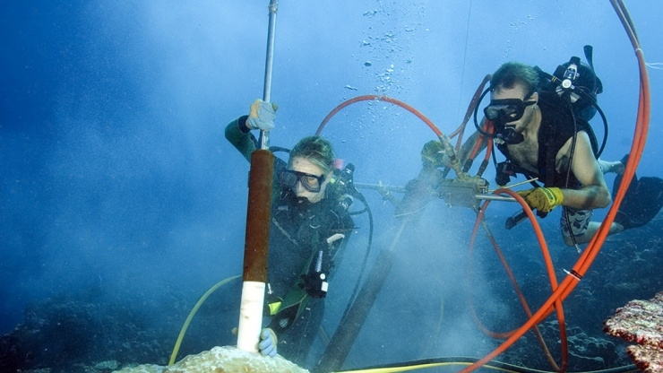 Drilling Coral Underwater