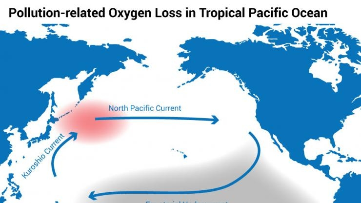Pollution-related Oxygen Loss in Tropical Pacifc Ocean