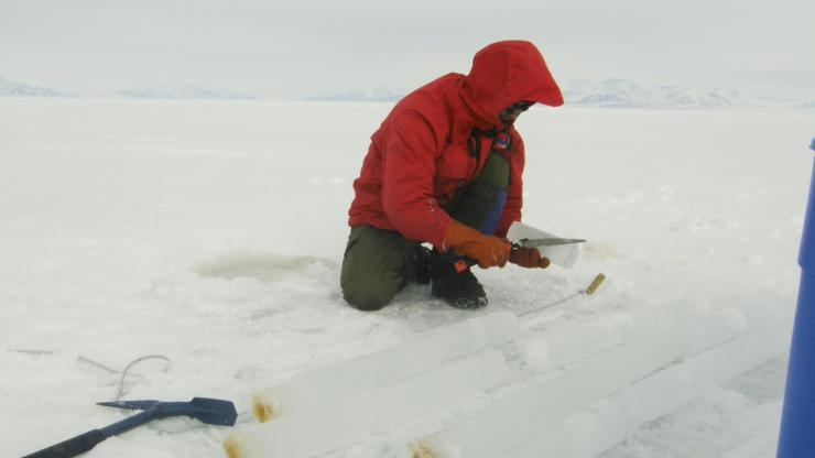 Jeff Bowman of Scripps in Antarctica