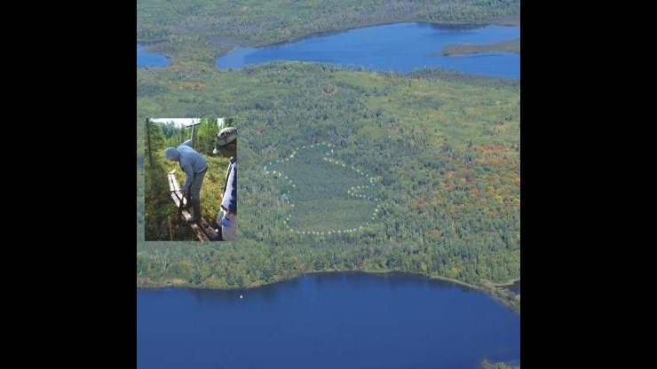 Spruce and Peatland Response Under Climatic and Environmental Change (SPRUCE)