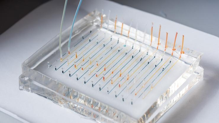 Microfluidic chip for nanoparticles