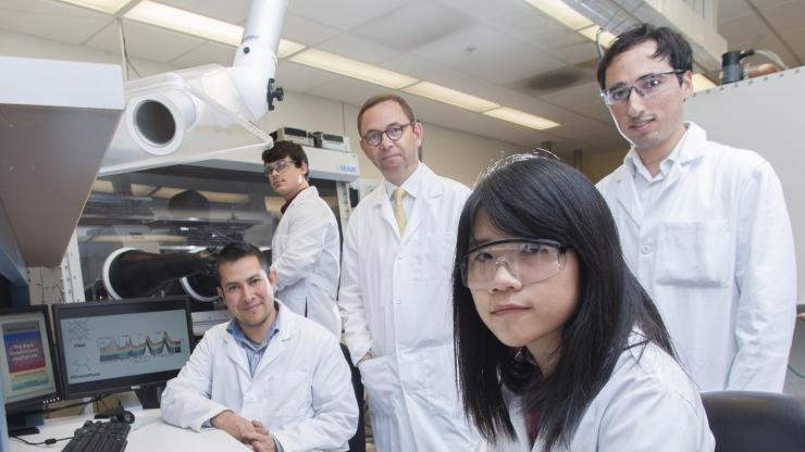 Polymer solar cell research team