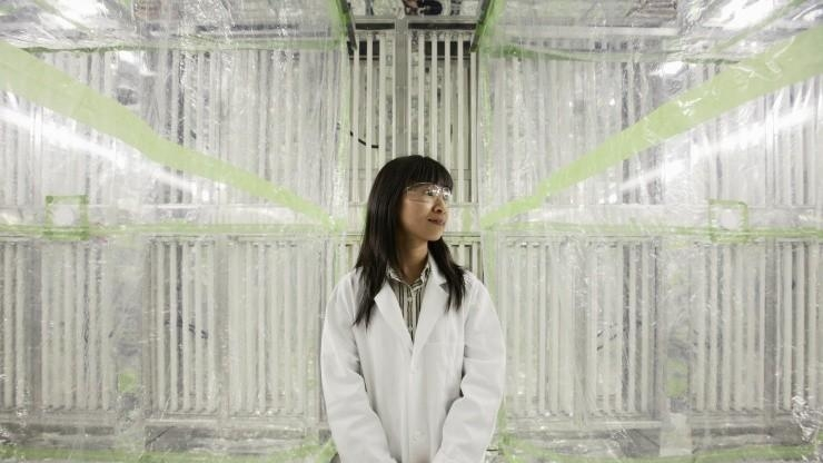 Sally Ng in her indoor environmental chamber