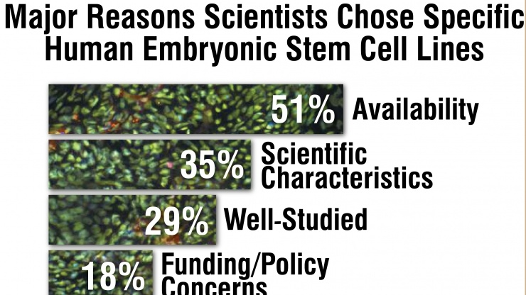 Chart on choosing stem cells