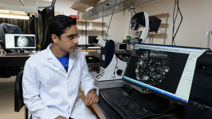Researcher Saad Bhamla and protozoan